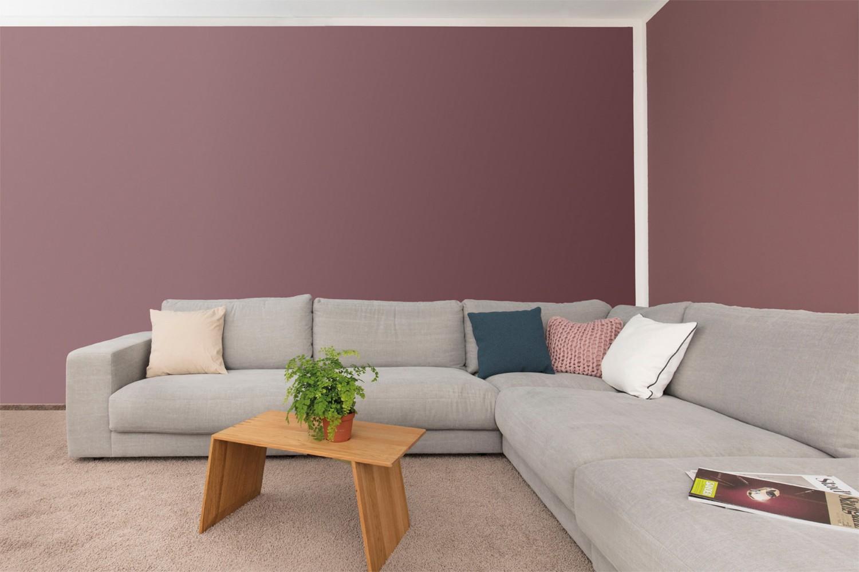 Rund ums Haus Stilvolle Farbtöne für ein gemütliches Zuhause - News, Bild 1