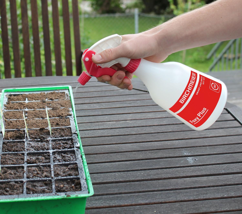 Garten Setzlinge richtig pflegen mit Produkten der Birchmeier Sprühtechnik AG - News, Bild 1
