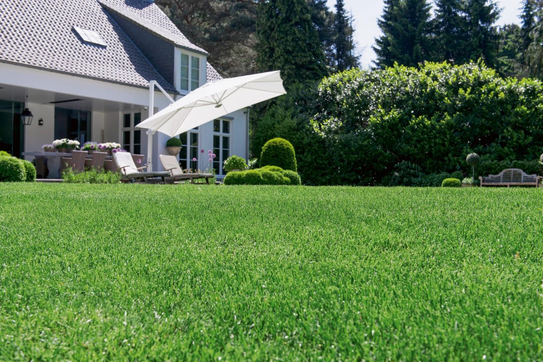 Für Einen Saftig Grünen Rasen Auf Das Richtige Düngen Kommt Es An