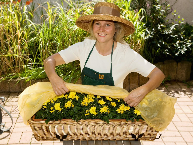 Garten Wirksamer Schutz für Blumenkästen mit den Polybeuteln von Planto - News, Bild 1