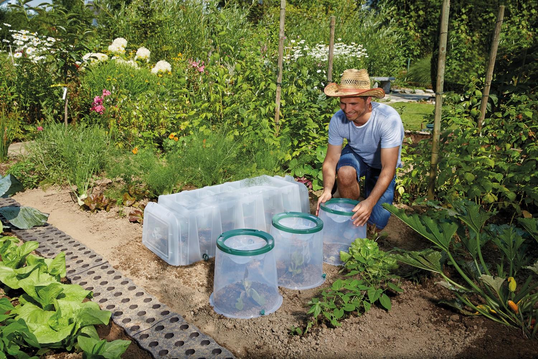 Garten Die mobile Frühbeet-Alternative - News, Bild 1