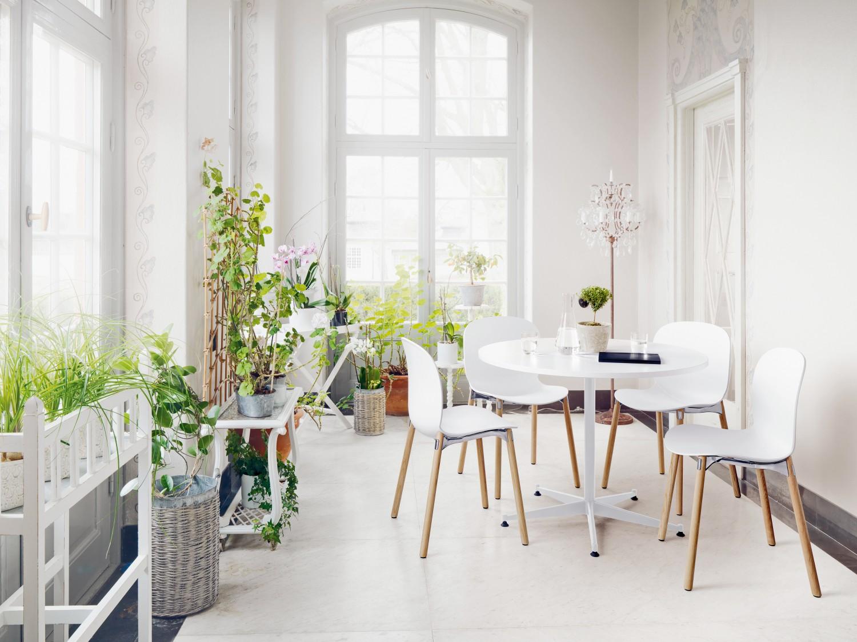 Living goes green mit skandinavischen st hlen nachhaltig Living wohnen