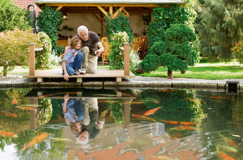Garten Klares Wasser im Gartenteich dank biologischer Algenprophylaxe von Söll - News, Bild 1