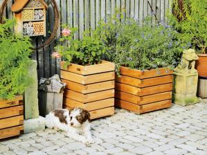 garten-ob-balkon-oder-terrasse-mit-kubio-pflanzkaesten-von-gartenfrosch-laesst-sich-ideal-begruenen-11123.jpg