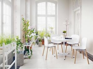 rund-ums-haus-living-goes-green-mit-skandinavischen-stuehlen-nachhaltig-wohnen-und-gesund-leben-14153.jpg