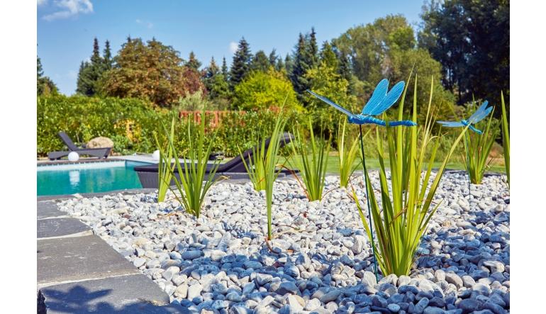 Garten Spezial Garten - Outdoor-Living - News, Bild 1