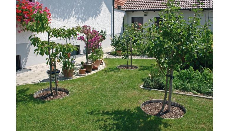 Rund ums Haus Pflanzringe für effiziente Bewässerung - News, Bild 1