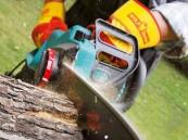 Kettensägen-Elektro: 5 Elektrokettensägen helfen Geld und Zeit zu sparen, Bild 1