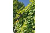Sonstige Gartengeräte: Fünf Akku-Garten-Multitools im Test, Bild 1