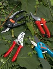 Astscheren: Gartenscheren im Vergleich, Bild 1