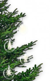Beleuchtung Krinner Lumix im Test, Bild 1
